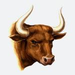 bull_head_01_org