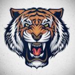 tiger_01_org