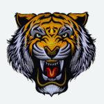 tiger_03